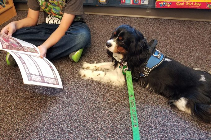 #WesleyTherapyDog at AG Intermediate School